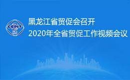 黑龙江省贸促会召开2020年全省贸促工作视频会议
